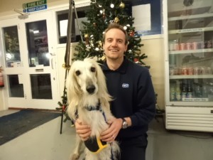 rspca-gifts-for-pets